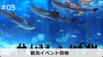 観光イベント情報
