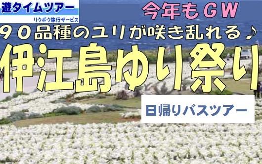 伊江島ゆり祭り 日帰りバスツアー