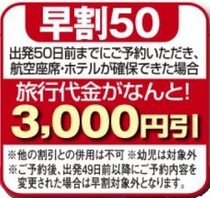 出発50日前までにご予約いただき、航空座席・ホテルが確保できた場合、旅行代金がなんと3,000円引き!