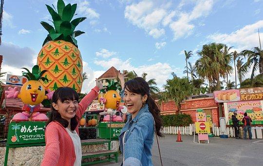 ナゴパイナップルパーク nahabusC_pineapplepark