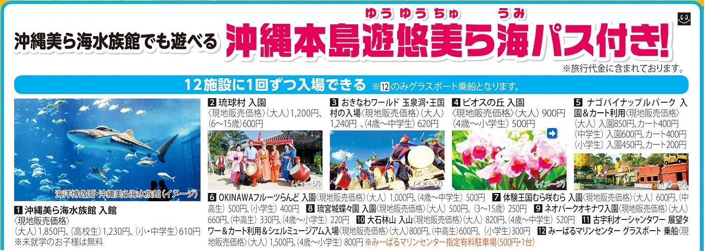 ●沖縄美ら海水族館でも遊べる!「遊悠美ら海パス」付き! 水族館や琉球村、おきなわワールドなど人気の観光スポット12施設に各1回入場OK!