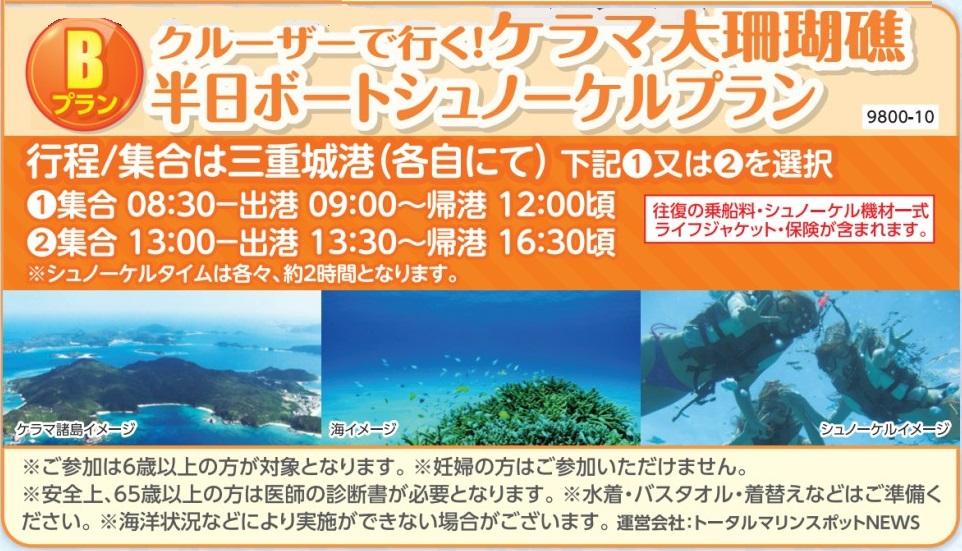 クルーザーで行くケラマ大さんご礁半日ボートシュノーケルプラン