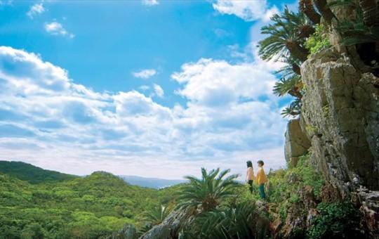 大石林山 イメージ