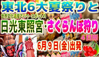 東北6大夏祭りと・日光東照宮・さくらんぼ狩り4日間|那覇発 遊タイムツアー