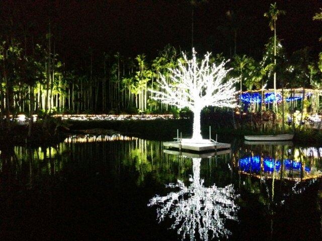 東南植物楽園 光の散歩道