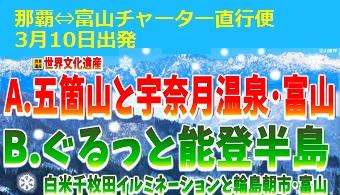 <添乗員同行>3月10日発 那覇⇔富山チャーター便利用 特別企画!