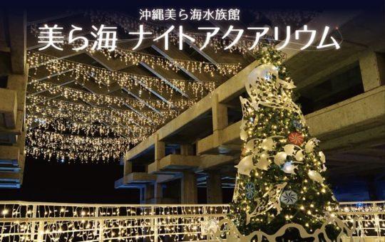 沖縄美ら海水族館 ~ナイトアクアリウム~