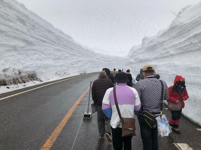 世界でも有数の豪雪地帯の立山室堂平ではなんと言っても「雪の大谷」!その高さは約15m!(最大20mに及ぶことも!)は圧巻!