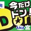 羽田発 ANA 宮古島チョイスプラン(格安ツアー)