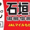 沖縄・那覇発 石垣島格安ツアー ホテルパック