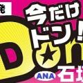 大阪発 ANA 石垣島チョイスプラン(格安ツアー)