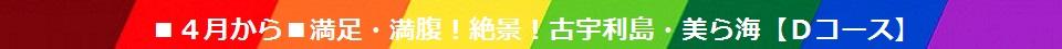 ▼【2017年4月から】満足・満腹!絶景!古宇利(こうり)島・美ら海(ちゅらうみ) 【Dコース】スケジュール