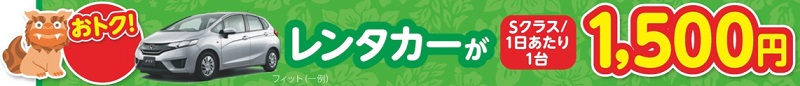 レンタカーオプションがお得!