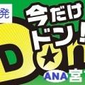 ANA 札幌発 宮古島 格安ツアー