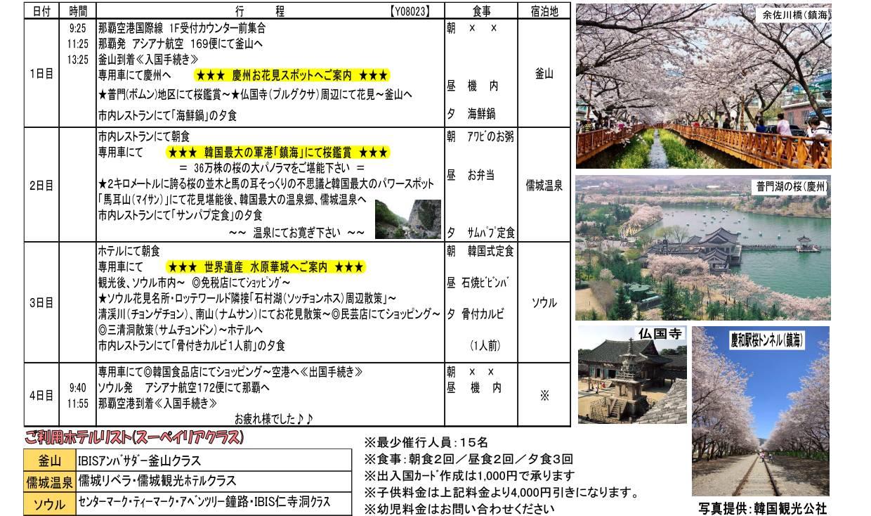 【桜花見】桜に酔う韓国大周遊4日間02